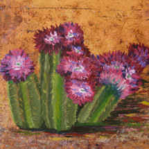 2015 Hedgehog Cactus in Bloom 20x16 Oil on Acrylic on Canvas